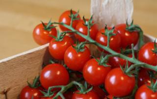 kleine süsse Tomaten