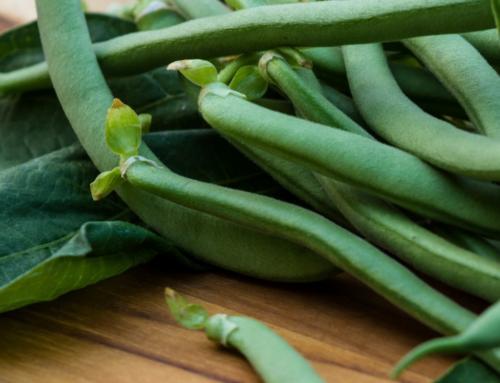 Fettucine mit grünen Bohnen und Champignons
