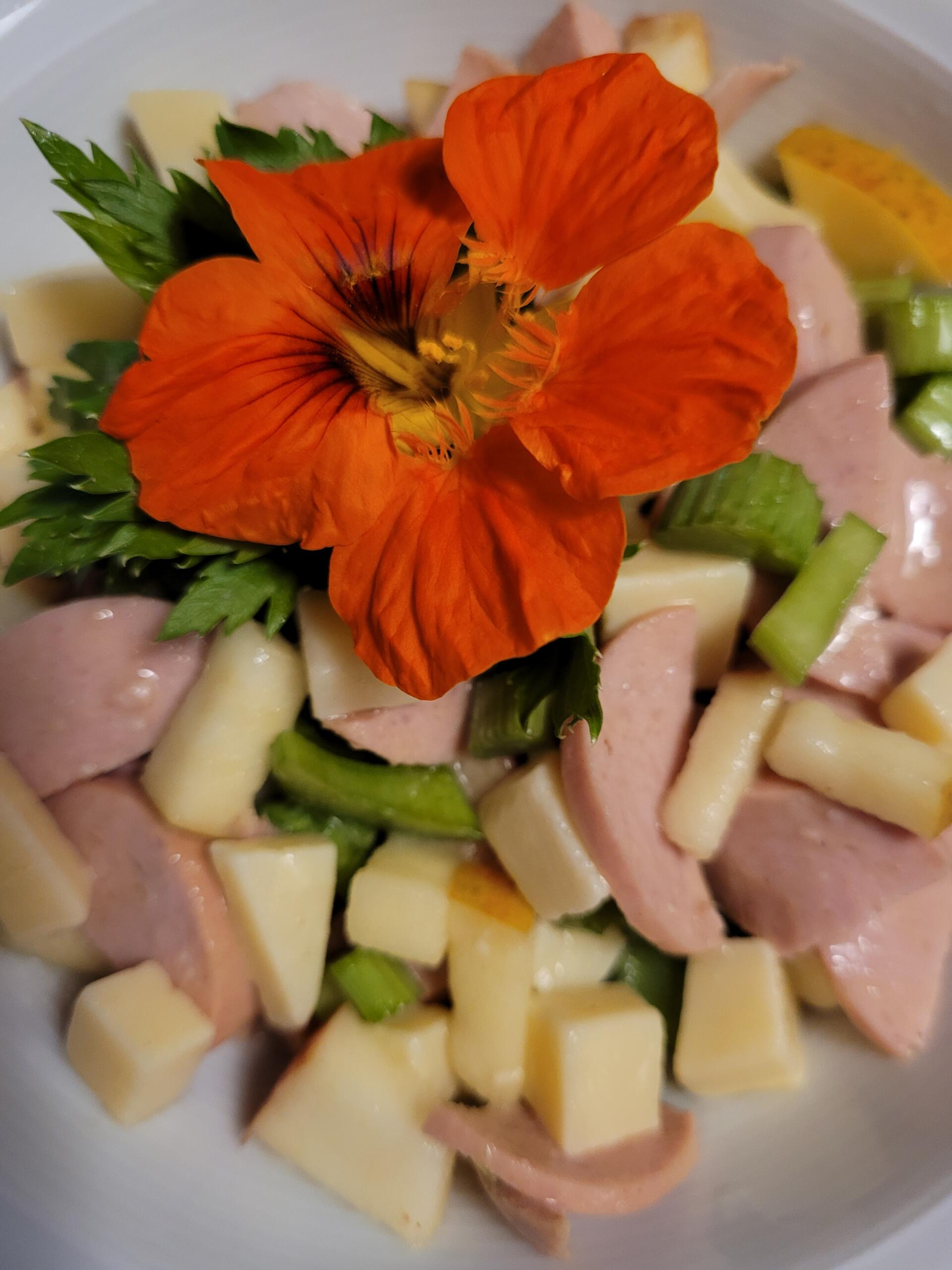 frischer Wurst-Käse-Salat mit Äpfeln und Stangensellerie